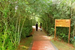 parque-Nacional-Iguazu-3