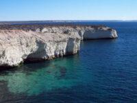 Península Valdés (Puerto Madryn) – Qué saber antes de Viajar