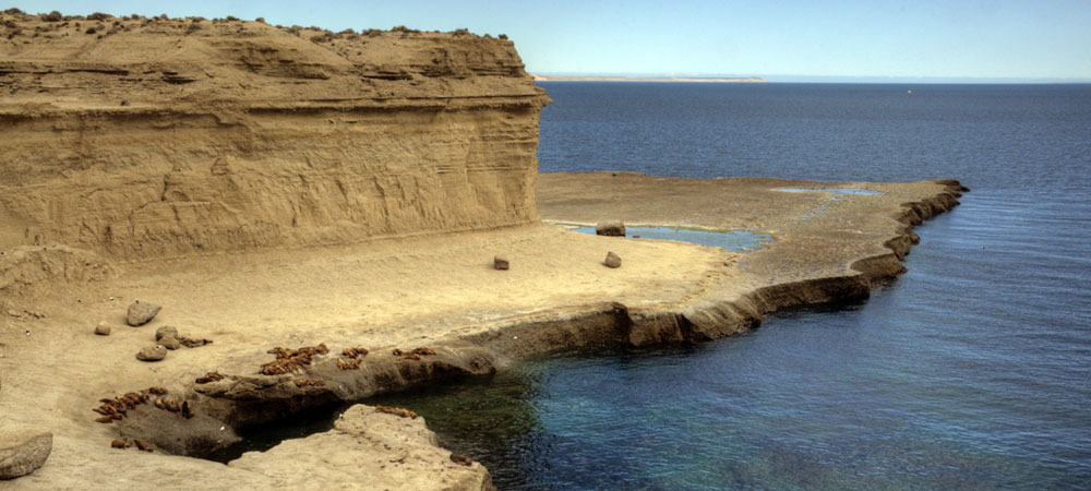 Península Valdés - Puerto Madryn – Chubut