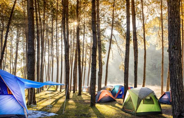 Camping en los bosques