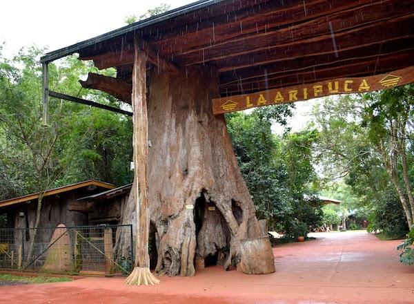 Eco-Turismo Aripuca